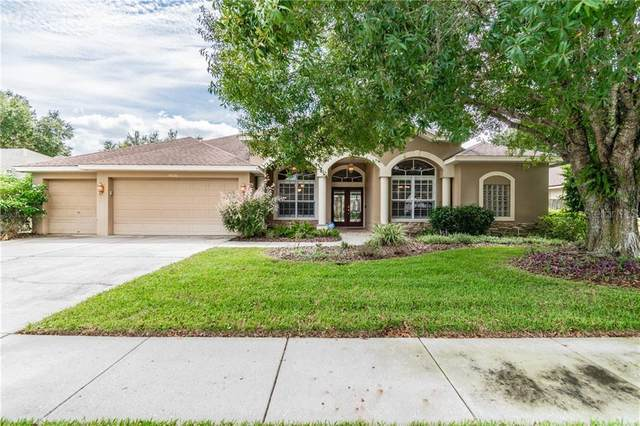4526 Serenity Trail, Palm Harbor, FL 34685 (MLS #U8098871) :: Burwell Real Estate