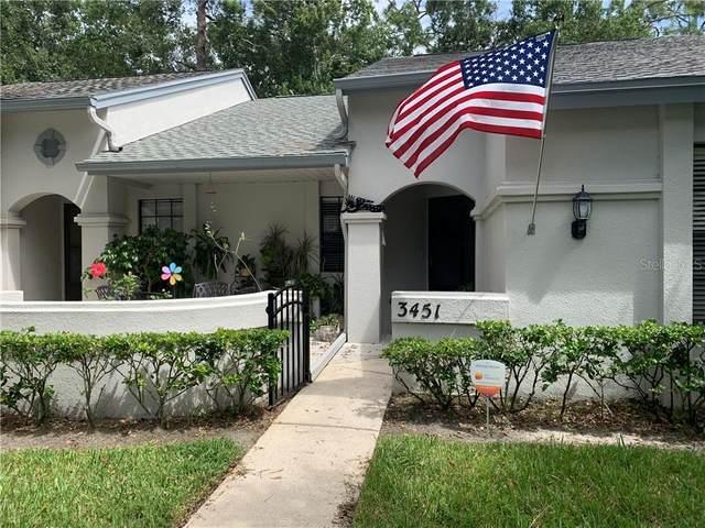3451 Killdeer Place, Palm Harbor, FL 34685 (MLS #U8098921) :: Rabell Realty Group