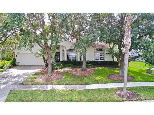 4792 Ridgemoor Circle, Palm Harbor, FL 34685 (MLS #U8098995) :: Burwell Real Estate