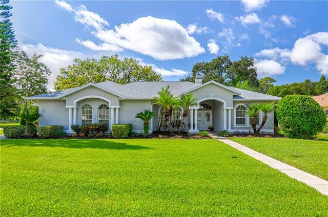 2268 Serenity Lane, Palm Harbor, FL 34683 (MLS #U8099016) :: Burwell Real Estate
