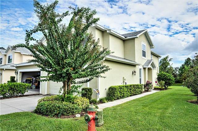 270 N Harbor Drive, Palm Harbor, FL 34683 (MLS #U8099030) :: Premier Home Experts