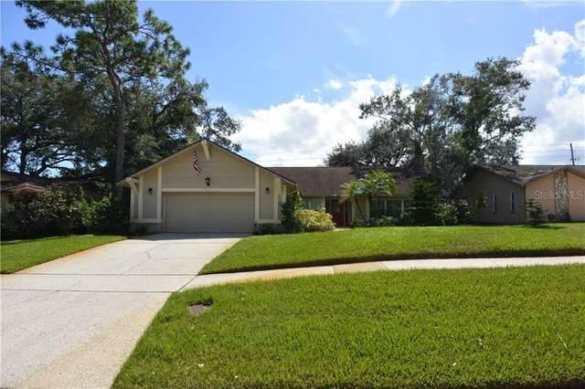 2917 Deer Run S, Clearwater, FL 33761 (MLS #U8099085) :: Florida Real Estate Sellers at Keller Williams Realty