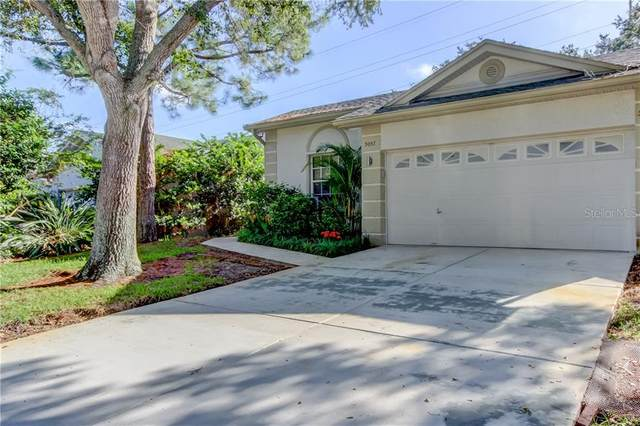 3057 Brookfield Lane, Clearwater, FL 33761 (MLS #U8099110) :: Burwell Real Estate
