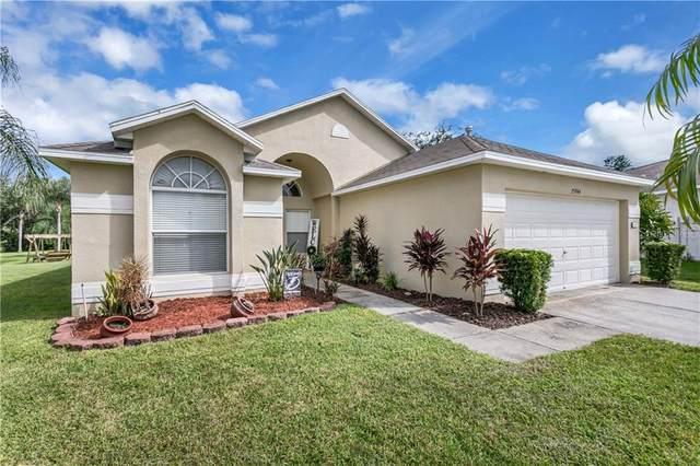 25944 Bloomsbury Court, Land O Lakes, FL 34639 (MLS #U8099127) :: Premier Home Experts