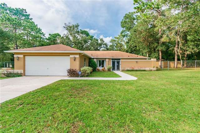 13237 Hazelcrest Street, Spring Hill, FL 34609 (MLS #U8099376) :: Frankenstein Home Team