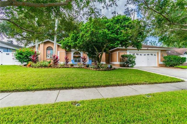 1656 Allens Ridge Drive N, Palm Harbor, FL 34683 (MLS #U8099417) :: Burwell Real Estate