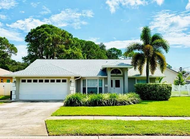 7727 17 Way N, St Petersburg, FL 33702 (MLS #U8099516) :: Team Borham at Keller Williams Realty