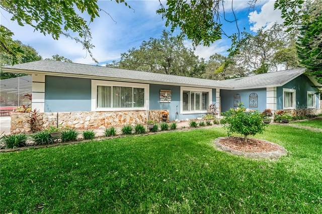 6617 Governors Drive, New Port Richey, FL 34655 (MLS #U8099935) :: Bustamante Real Estate