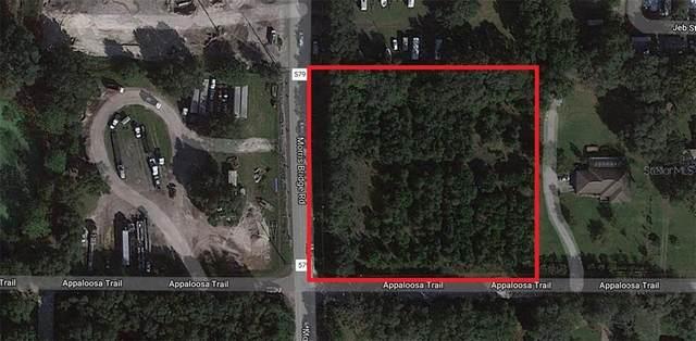 4000 Morris Bridge Road, Zephyrhills, FL 33543 (MLS #U8100791) :: Carmena and Associates Realty Group
