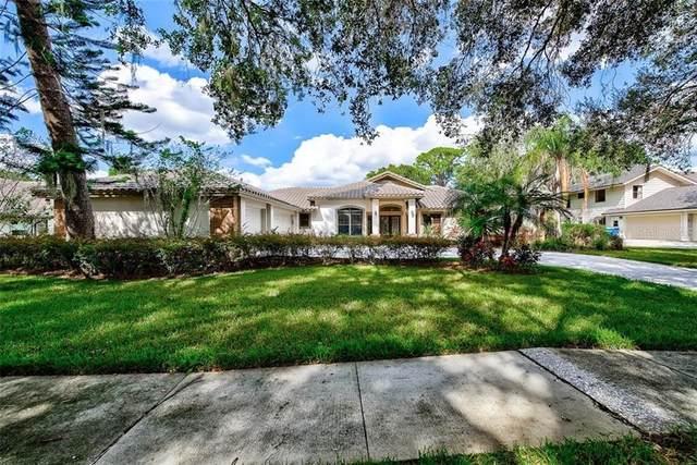 3741 Woodridge Place, Palm Harbor, FL 34684 (MLS #U8101040) :: Pepine Realty