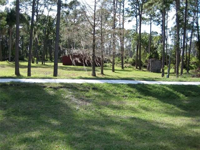8766 Winter Garden Vinela Road, Orlando, FL 32836 (MLS #U8101201) :: Bustamante Real Estate