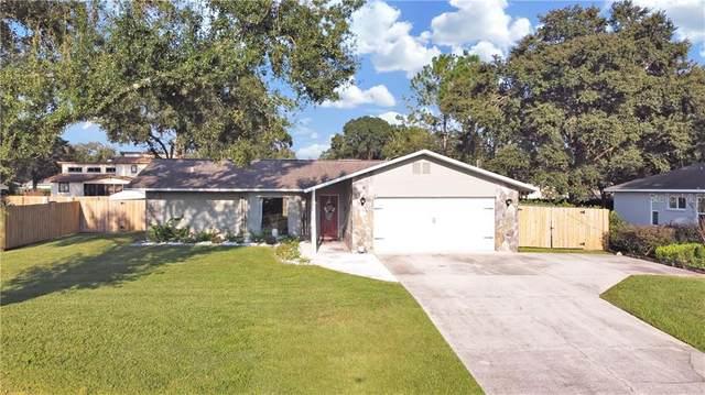 3016 Lake Saxon Drive, Land O Lakes, FL 34639 (MLS #U8101480) :: Alpha Equity Team