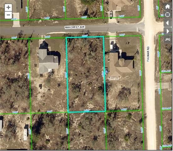 13130 Maycrest Avenue, Weeki Wachee, FL 34614 (MLS #U8101607) :: Griffin Group