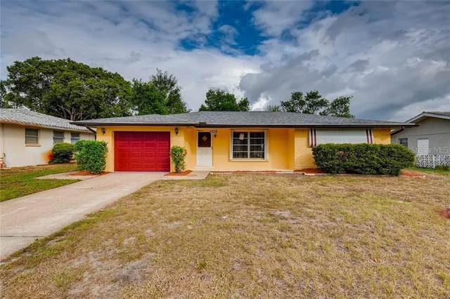 10134 Holly Drive, Port Richey, FL 34668 (MLS #U8101675) :: Homepride Realty Services