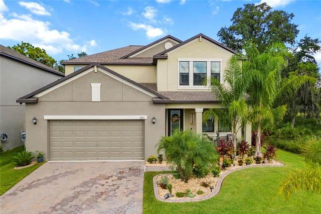 13251 Orca Sound Drive, Riverview, FL 33579 (MLS #U8101853) :: Frankenstein Home Team