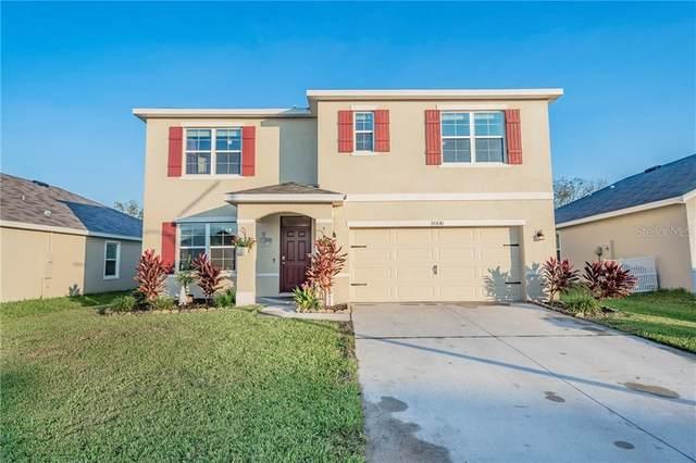 30841 Summer Sun Loop, Wesley Chapel, FL 33545 (MLS #U8101863) :: Real Estate Chicks