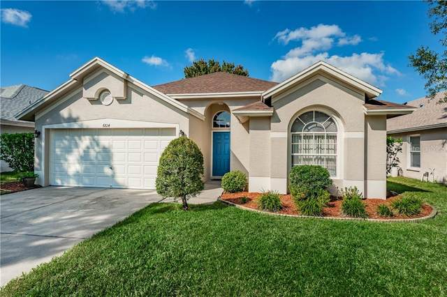 6614 Short Bay Place, Tampa, FL 33615 (MLS #U8101883) :: Frankenstein Home Team