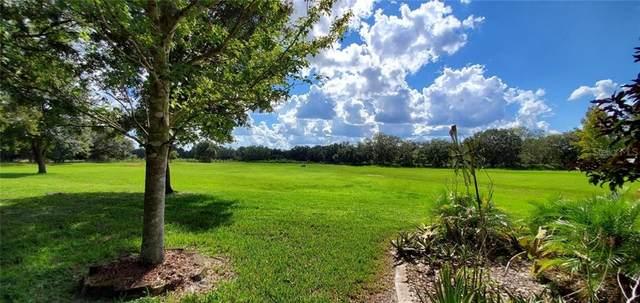 162 Horseshoe Bend, Lake Wales, FL 33898 (MLS #U8101987) :: New Home Partners