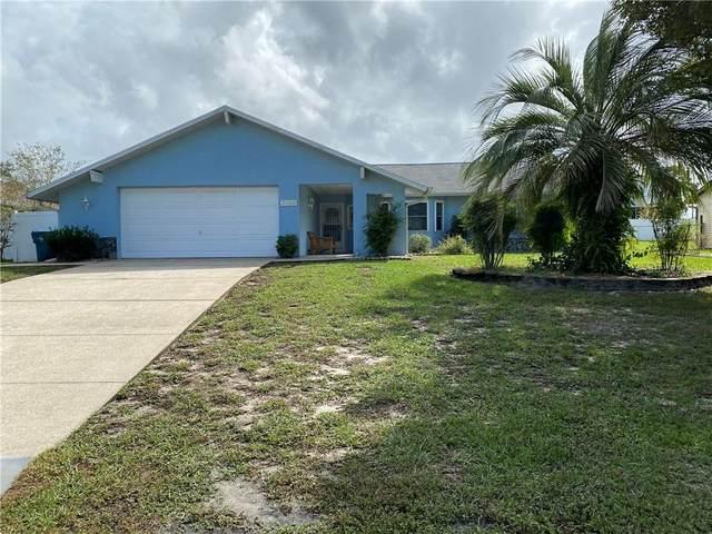 5388 Roble Avenue, Spring Hill, FL 34608 (MLS #U8102099) :: Delta Realty, Int'l.