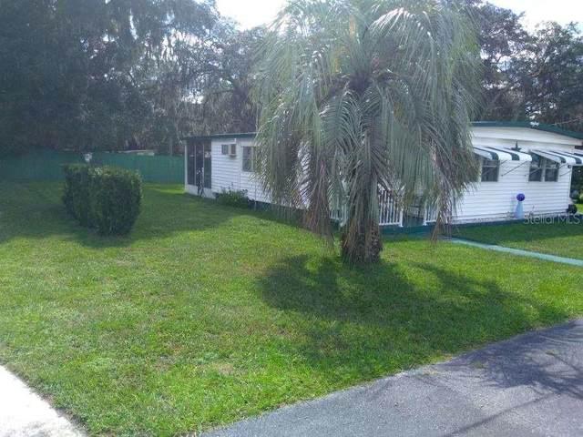 37300 Kinkaid Drive, Zephyrhills, FL 33541 (MLS #U8102219) :: The Light Team