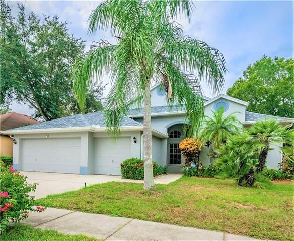 1825 Wood Haven Street, Tarpon Springs, FL 34689 (MLS #U8102228) :: Pristine Properties