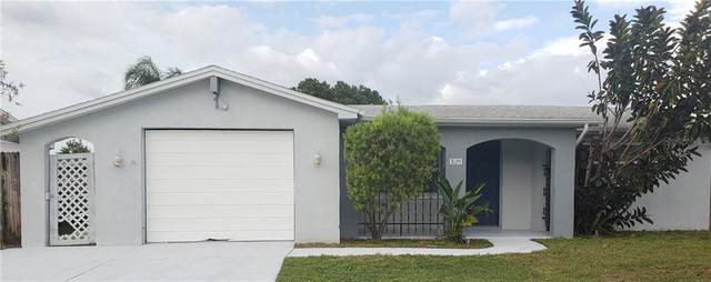 3125 Coldwell Drive, Holiday, FL 34691 (MLS #U8102231) :: Pristine Properties