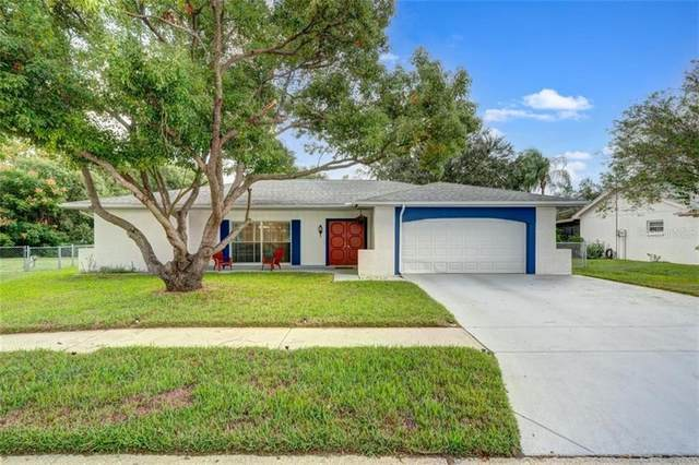 8601 Stonehedge Way, Hudson, FL 34667 (MLS #U8102275) :: The Paxton Group