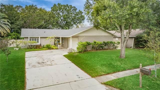 1534 Cottonwood Terrace, Dunedin, FL 34698 (MLS #U8102328) :: The Paxton Group