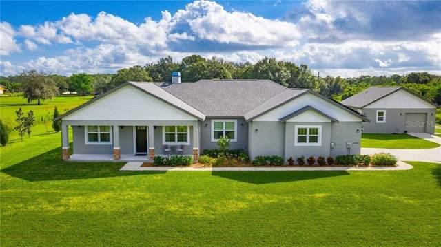 14805 Us Highway 301 N, Parrish, FL 34219 (MLS #U8102349) :: Griffin Group