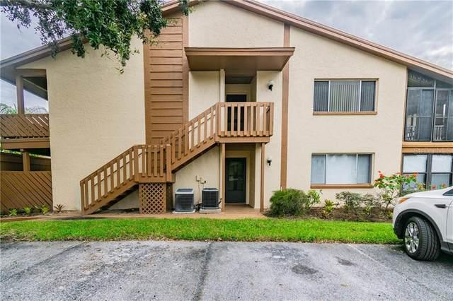 4422 Pelorus Drive, New Port Richey, FL 34652 (MLS #U8102384) :: Alpha Equity Team