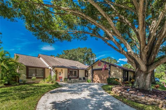 2530 Bay Berry Drive, Clearwater, FL 33763 (MLS #U8102402) :: The Light Team
