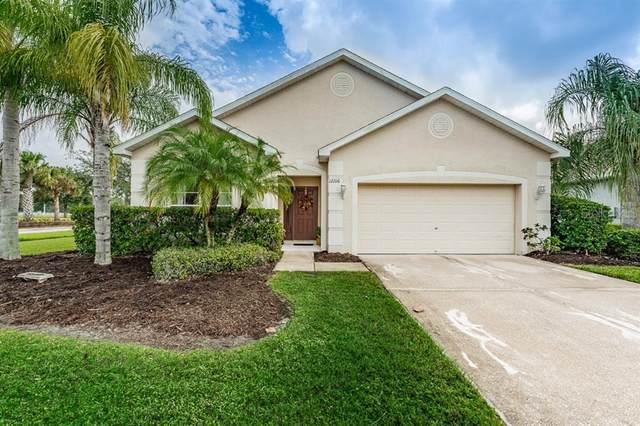12106 Fern Blossom Drive, Gibsonton, FL 33534 (MLS #U8102417) :: Frankenstein Home Team