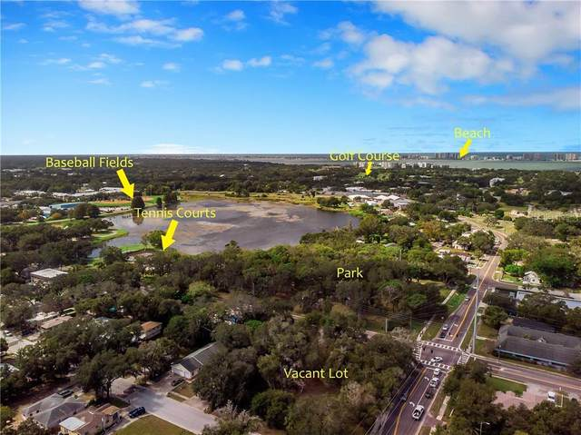 1101 Lakeview Road, Clearwater, FL 33756 (MLS #U8102429) :: Baird Realty Group