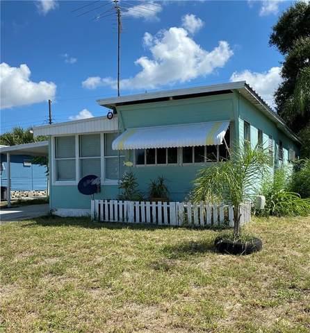2110 Orange Drive, Holiday, FL 34691 (MLS #U8102536) :: MavRealty