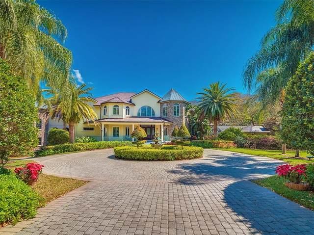 3652 Woodridge Place, Palm Harbor, FL 34684 (MLS #U8102565) :: Pepine Realty