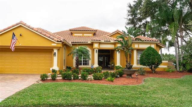 800 Belted Kingfisher Drive S, Palm Harbor, FL 34683 (MLS #U8102606) :: Icon Premium Realty