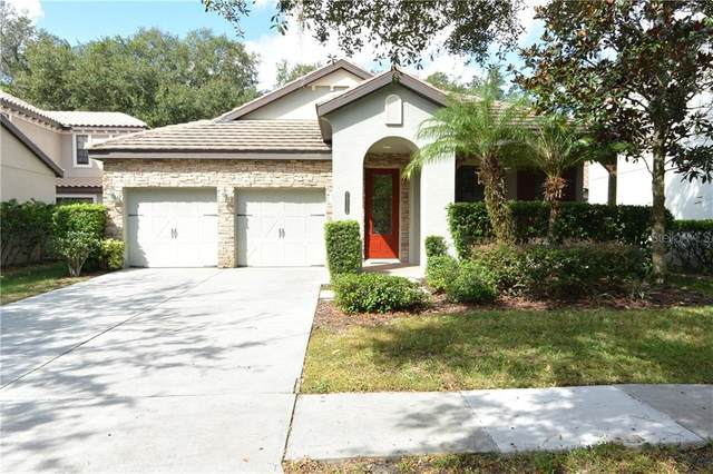 20334 Chestnut Grove Drive, Tampa, FL 33647 (MLS #U8102639) :: Team Bohannon Keller Williams, Tampa Properties