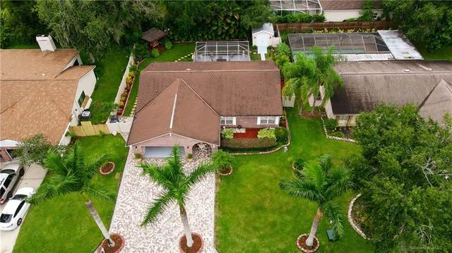 11418 Country Oaks Drive, Tampa, FL 33618 (MLS #U8102673) :: Cartwright Realty