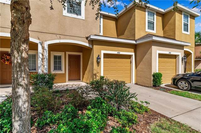 6909 Holly Heath Drive, Riverview, FL 33578 (MLS #U8102991) :: Cartwright Realty