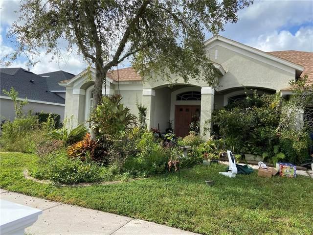 5653 Spectacular Bid Drive, Wesley Chapel, FL 33544 (MLS #U8103003) :: Florida Real Estate Sellers at Keller Williams Realty