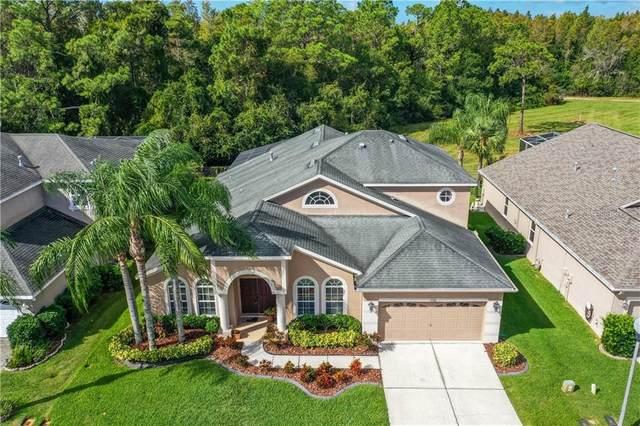 2336 Brinley Drive, Trinity, FL 34655 (MLS #U8103120) :: Florida Real Estate Sellers at Keller Williams Realty