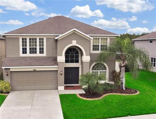 18000 Ayrshire Boulevard, Land O Lakes, FL 34638 (MLS #U8103169) :: Griffin Group
