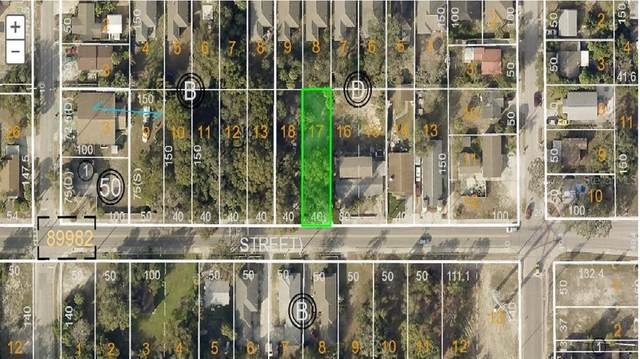 Martin Luther King Jr Drive, Tarpon Springs, FL 34689 (MLS #U8103177) :: EXIT King Realty