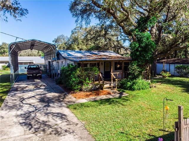 7401 Altaloma Street, Tampa, FL 33625 (MLS #U8103458) :: Delgado Home Team at Keller Williams