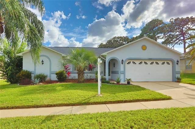 10924 Claverton Avenue, Hudson, FL 34667 (MLS #U8103515) :: Griffin Group
