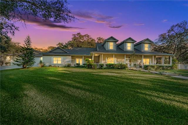 10836 Thoroughbred Lane, New Port Richey, FL 34654 (MLS #U8103574) :: Rabell Realty Group