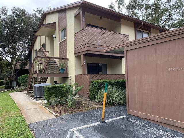 640 Fairmont Avenue A, Safety Harbor, FL 34695 (MLS #U8103675) :: RE/MAX Marketing Specialists