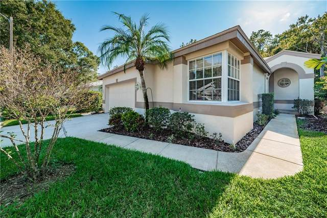 3544 Sylvan Edge Drive, Palm Harbor, FL 34685 (MLS #U8103698) :: RE/MAX Marketing Specialists