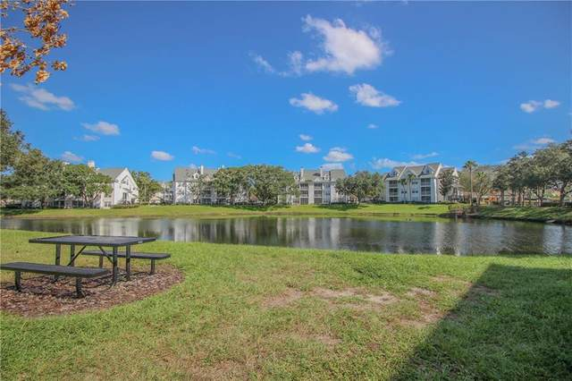 3275 Haviland Court #302, Palm Harbor, FL 34684 (MLS #U8103822) :: Frankenstein Home Team