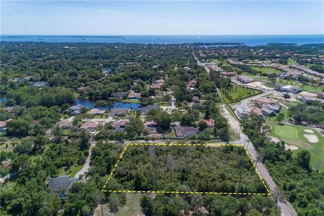 3399 Rolling Woods Drive, Palm Harbor, FL 34683 (MLS #U8104051) :: Bridge Realty Group
